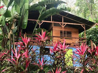 Colibri Jungle Oasis, Close to the Beach
