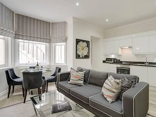 Beautiful One Bedroom Apartment Close To Kensington Palace (Lower Ground Floor)