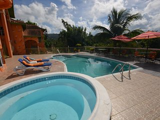 LARGE MANSION! FAMILY REUNIONS! WEDDINGS! Dream Castle Villa, Montego Bay 9BR