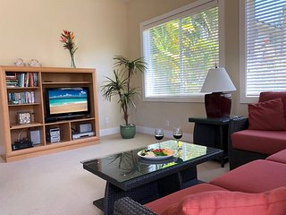 Free Rental Car, Ground Floor A/C Condo Near Beaches