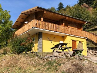Chalet des Bruyères, 8p, La Bresse, 5mn des pistes, Sauna