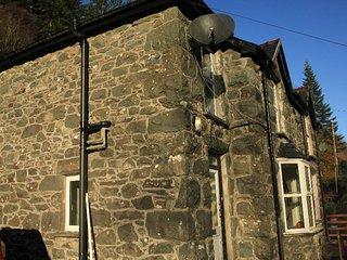 Coed Y Brenin, North Wales