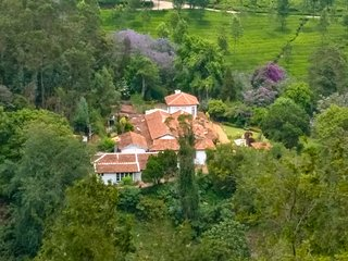 A bird's eye view of the property