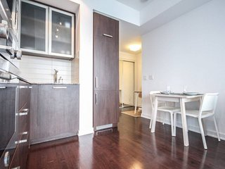 Charming 1 Bedroom with CN Tower View,Downtown
