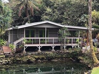 Gated Private Mini Estate in Hilo, HI