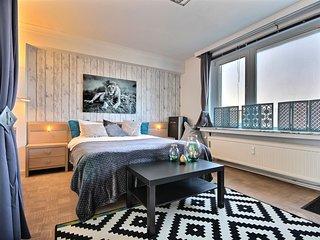 Penthouse sur les toits – 1 bedroom