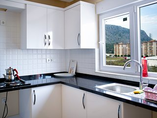 D7: Spacious 2 bedroom, 3rd floor, super mountain view, free wifi