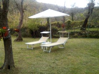 il rifugio tra gli ulivi     pace e tranquillità cod citra 010054-LT-0248
