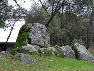 Mossy Rock Strawbale Guest House - Mariposa / Yosemite : 2BD