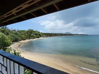 Villa Dos Palmas (Beach Unit)