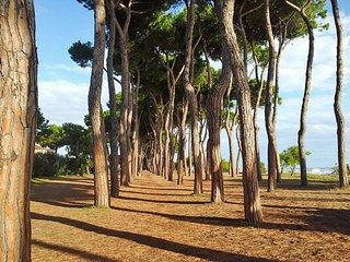 Villino del Parco Cerrano (PIT200)