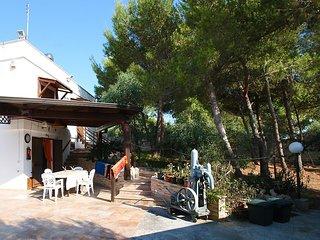 cotriero pineta red house