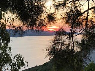 Island View Cabin