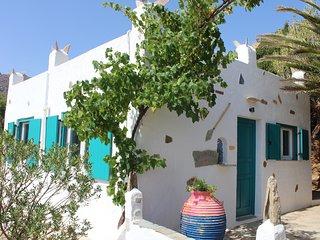 Andros-House Alexandros