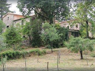 Mas Ferrieres Grande Maison Cevenole 120m2 sur parc de 34ha
