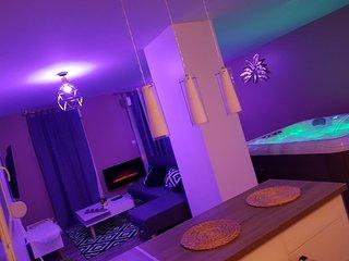 Somptueuse suite SPA/Sauna privatifs de 100m2