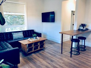 302-Trendy 1 Bedroom Apt in Downtown San Jose City