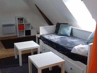 appartement lumineux au coeur de Malicorne sur Sarthe