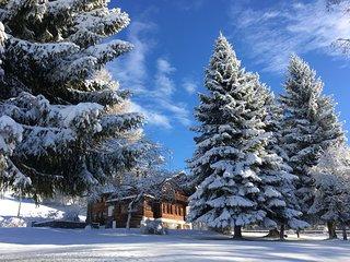 Appartement dans chalet renove dans les Alpes Vaudoise