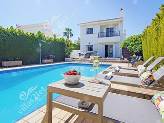 Cyprus Holiday Villa ALETA Profile