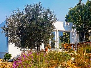 Contemporary Beach House designed for families