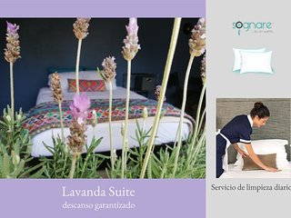 Lavanda Suite Polanco