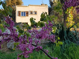 Belle maison provencale La Champanel