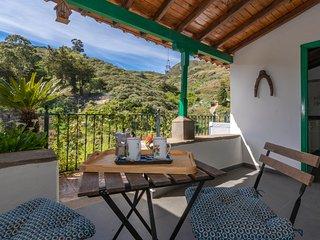 Holiday cottage near Tenteniguada