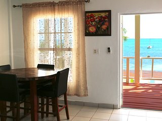 1-B/Room Beachfront Apt, A/C, Centrally Located