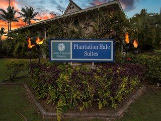 Plantation Hale F16