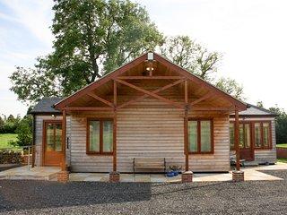 LITTLE OWL LODGE, dry air sauna, whirlpool bath, modern lodge, near Bishop