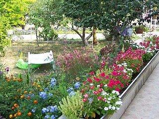 Naturaleza, Aire libre, Patio, Jardín, Cerámica