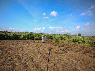 Asma's Vegetable Farm Villa
