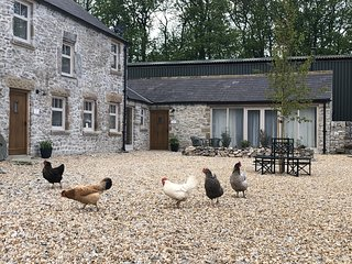 The Cowshed - sleeps 4 barn conversion - Nr. Bakewell