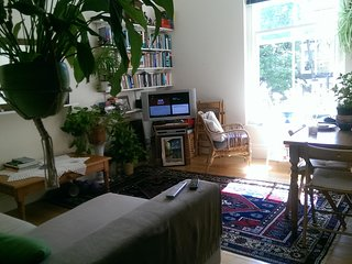 D.room/flat for a Couple or Single professional in Kensington and Chealse
