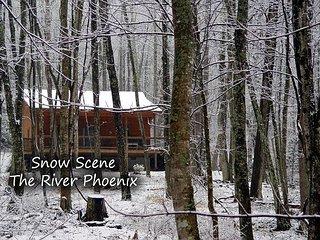 River Phoenix - 2BR/1BA Creekside Cabin w/WIFI, Fire Pit & Pet Friendly!