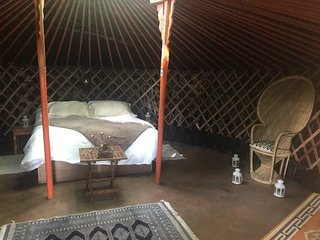 Baby Moon 'Oak', a woodland hideaway yurt