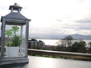 Precioso Apartamento con Magníficas vistas a toda la ciudad - Apartamento Aifos