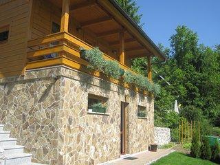 Chalet 'Gorski cvet' near Krvavec