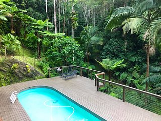 Rainforest Retreat Amazingly Tranquil with Pool in Currumbin Valley