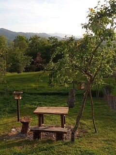 zona verde con mesa