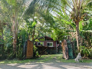 Tropical Tree Guest House near Pahoa Hawaii