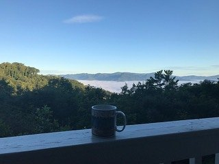 Perfect view for your morning coffee.
