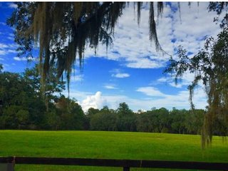 Charming Equestrian Views on Gated Horse Farm 1/1 Private Apt