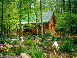 CREEKSIDE SERENADE-CABIN ON MTN STREAM W/BUBBLING HOT TUB, WIFI & GAME TABLE!