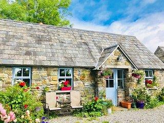 Piltown, Barrow Valley, County Kilkenny - 14379