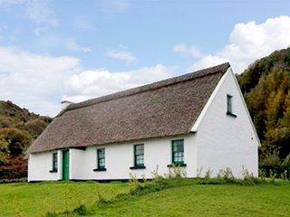 Corofin, Nr Ennis, County Clare - 10730