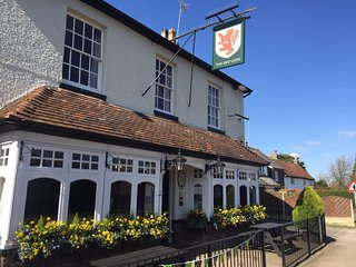 Red Lion Breachwood Green Rm1