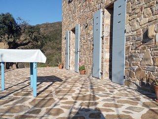 Casa Mancose, Urlaub im Olivenhain mit Meerblick im Cilento