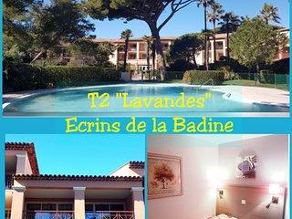 T2 'Lavandes' des Ecrins de la Badine, piscine et plage à pieds
